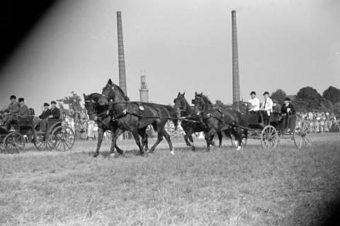 ARH NL Dierssen 1051/0011, Reitturnier, Springe, 1950