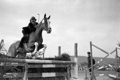 ARH NL Dierssen 1051/0022, Reitturnier, Springe, 1950