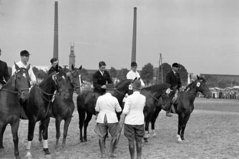 ARH NL Dierssen 1051/0025, Reitturnier, Springe, 1950