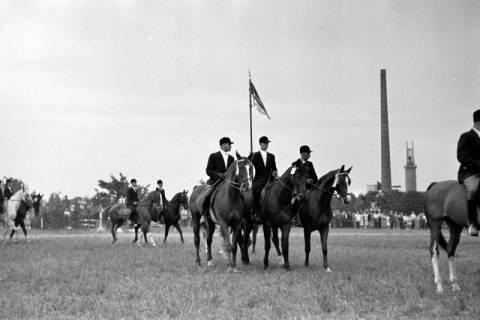 ARH NL Dierssen 1051/0027, Reitturnier, Springe, 1950