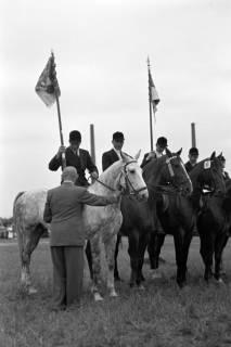 ARH NL Dierssen 1052/0002, Reitturnier, Springe, 1950