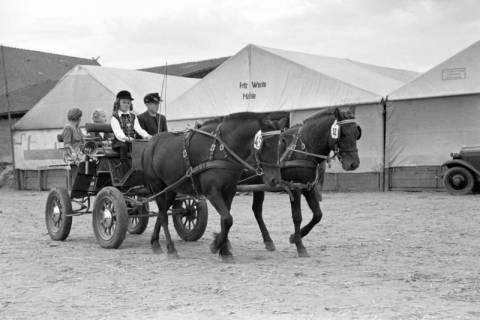 ARH NL Dierssen 1074/0002, Reitturnier, Eldagsen, 1950