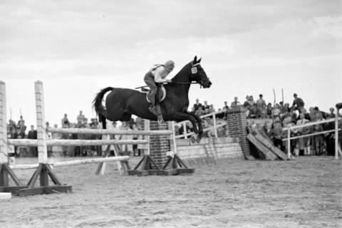 ARH NL Dierssen 1074/0005, Reitturnier, Eldagsen, 1950