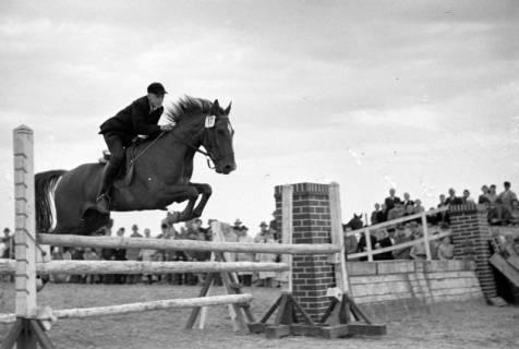 ARH NL Dierssen 1074/0006, Reitturnier, Eldagsen, 1950