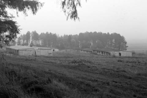 ARH NL Dierssen 1084/0010, Alte Baracken der Luther-Werke, Steinkrug, 1950