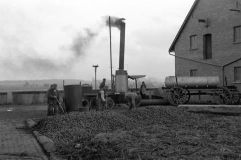 ARH NL Dierssen 1084/0018, Kartoffeldampfer, Köthenwald, 1950