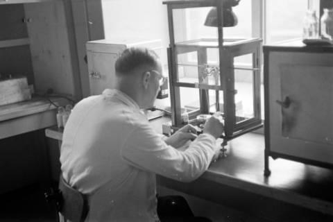 ARH NL Dierssen 1085/0025, Kaliwerk, Hänigsen, 1950