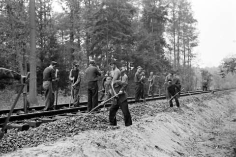 ARH NL Dierssen 1086/0003, Bau von Bahngleisen, Hänigsen, 1950