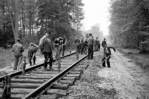 ARH NL Dierssen 1086/0004, Bau von Bahngleisen, Hänigsen, 1950