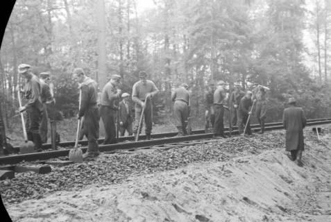 ARH NL Dierssen 1086/0005, Bau von Bahngleisen, Hänigsen, 1950