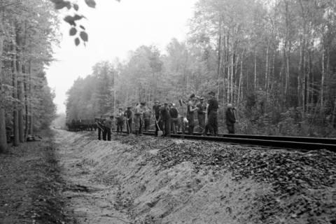 ARH NL Dierssen 1086/0006, Bau von Bahngleisen, Hänigsen, 1950