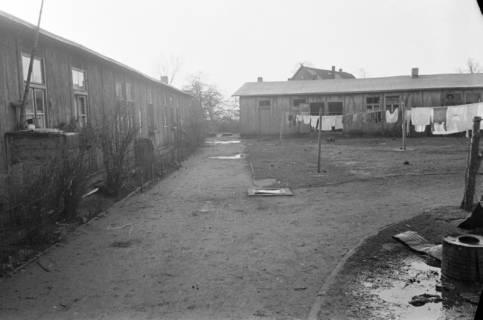 """ARH NL Dierssen 1098/0004, Baracken """"Haus Hahme"""", Godshorn, 1950"""