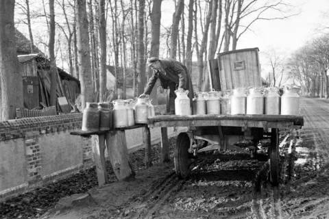 ARH NL Dierssen 1098/0006, Milchwagen, Oldhorst, 1950