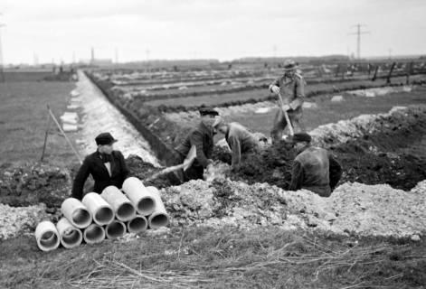 ARH NL Dierssen 1098/0025, Drainagearbeiten, Höver, 1950