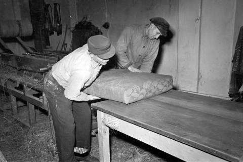 ARH NL Dierssen 1118/0022, Matratzenfabrik, Burgdorf, 1951