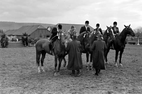 ARH NL Dierssen 1135/0005, Reiterfest, Springe, 1951