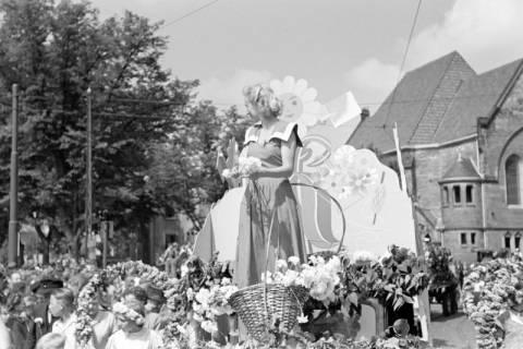 ARH NL Dierssen 1144/0007, Schützenfest, Hannover, 1951