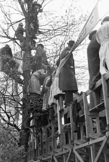 ARH NL Dierssen 1153/0027, Eilenriederennen, Hannover, 1951