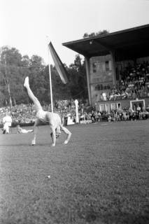 ARH NL Dierssen 1154/0017, Deutsche Turnmeisterschaft, Hannover, 1951