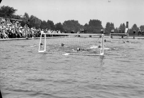 ARH NL Dierssen 1155/0023, Deutsche Wasserballmeisterschaft, Hannover, 1951