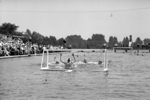 ARH NL Dierssen 1155/0024, Deutsche Wasserballmeisterschaft, Hannover, 1951