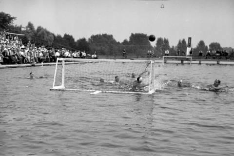 ARH NL Dierssen 1155/0025, Deutsche Wasserballmeisterschaft, Hannover, 1951