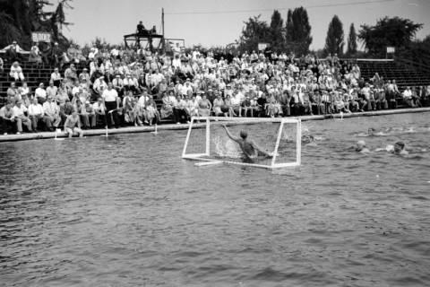 ARH NL Dierssen 1155/0026, Deutsche Wasserballmeisterschaft, Hannover, 1951