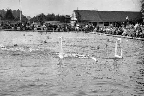 ARH NL Dierssen 1155/0027, Deutsche Wasserballmeisterschaft, Hannover, 1951