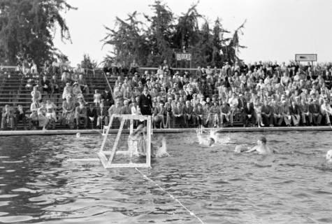 ARH NL Dierssen 1156/0001, Deutsche Wasserballmeisterschaft, Hannover, 1951