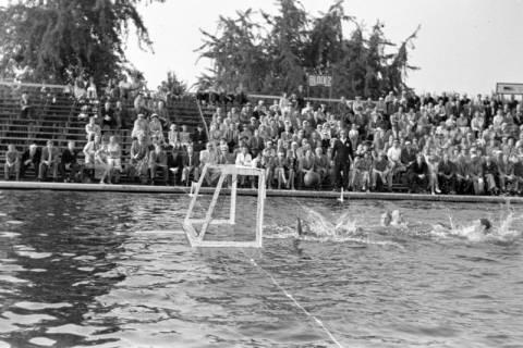 ARH NL Dierssen 1156/0002, Deutsche Wasserballmeisterschaft, Hannover, 1951