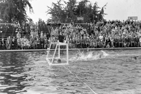 ARH NL Dierssen 1156/0004, Deutsche Wasserballmeisterschaft, Hannover, 1951