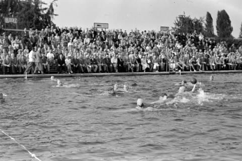 ARH NL Dierssen 1156/0005, Deutsche Wasserballmeisterschaft, Hannover, 1951