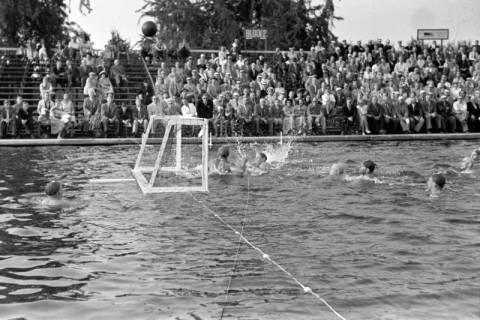 ARH NL Dierssen 1156/0007, Deutsche Wasserballmeisterschaft, Hannover, 1951