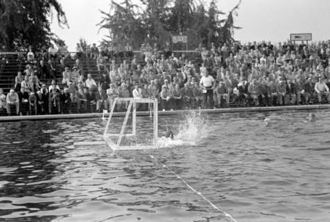 ARH NL Dierssen 1156/0008, Deutsche Wasserballmeisterschaft, Hannover, 1951