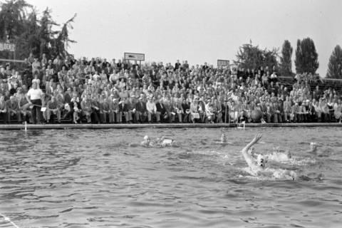 ARH NL Dierssen 1156/0009, Deutsche Wasserballmeisterschaft, Hannover, 1951