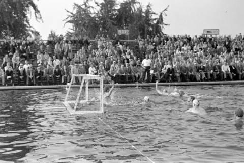 ARH NL Dierssen 1156/0010, Deutsche Wasserballmeisterschaft, Hannover, 1951