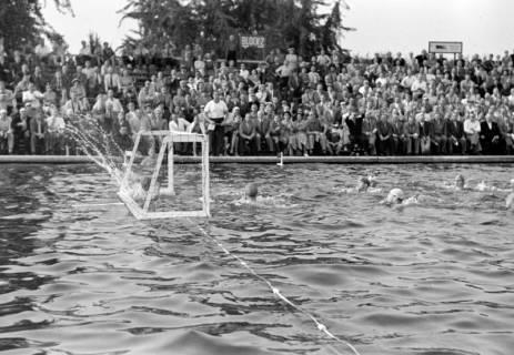 ARH NL Dierssen 1156/0011, Deutsche Wasserballmeisterschaft, Hannover, 1951
