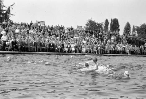 ARH NL Dierssen 1156/0012, Deutsche Wasserballmeisterschaft, Hannover, 1951