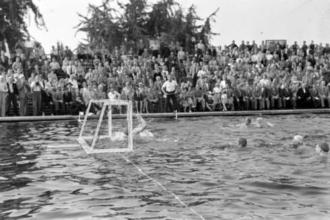 ARH NL Dierssen 1156/0013, Deutsche Wasserballmeisterschaft, Hannover, 1951