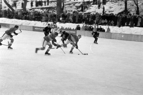 ARH NL Dierssen 1172/0011, Deutsche Jugendmeisterschaft in Eishockey, Clausthal-Zellerfeld, 1952