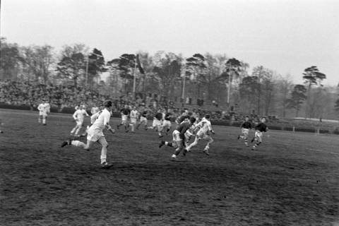 ARH NL Dierssen 1175/0011, Rugby Deutschland - Belgien, Hannover, 1952