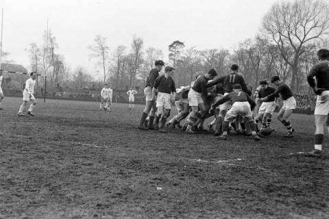 ARH NL Dierssen 1175/0013, Rugby Deutschland - Belgien, Hannover, 1952