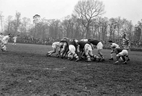 ARH NL Dierssen 1175/0014, Rugby Deutschland - Belgien, Hannover, 1952