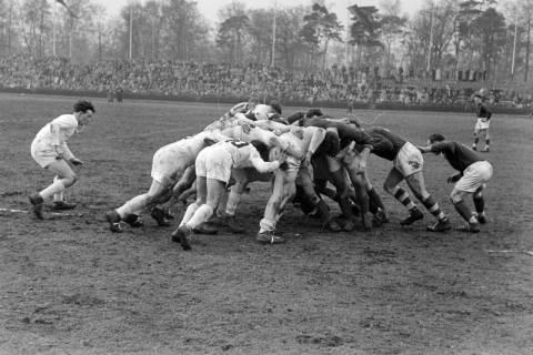 ARH NL Dierssen 1175/0018, Rugby Deutschland - Belgien, Hannover, 1952