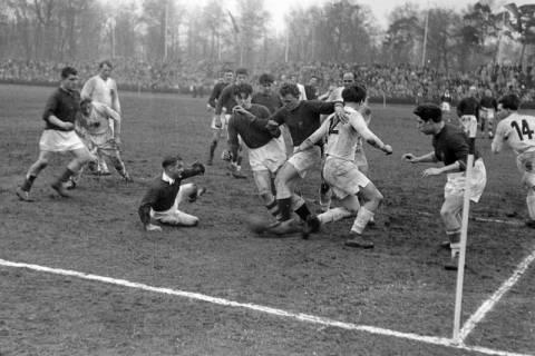 ARH NL Dierssen 1175/0023, Rugby Deutschland - Belgien, Hannover, 1952