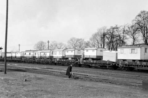 ARH NL Dierssen 1178/0022, Waggons vom Cirkus Busch aus Berlin, Seesen, 1952