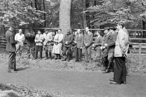ARH NL Dierssen 1183/0007, Jägerprüfung im Saupark, Springe, 1952