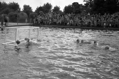 ARH NL Dierssen 1189/0010, Wasserball Deutschland gegen Schweden, Hannover, 1952