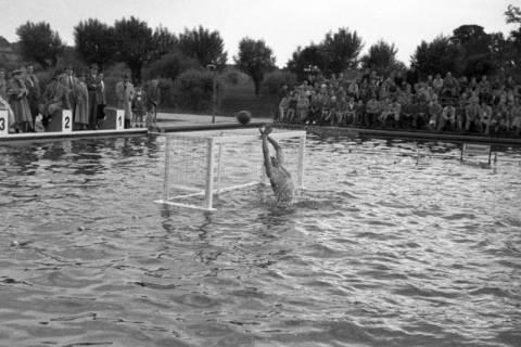 ARH NL Dierssen 1189/0011, Wasserball Deutschland gegen Schweden, Hannover, 1952