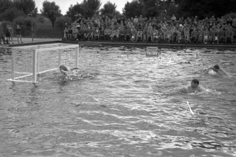 ARH NL Dierssen 1189/0013, Wasserball Deutschland gegen Schweden, Hannover, 1952